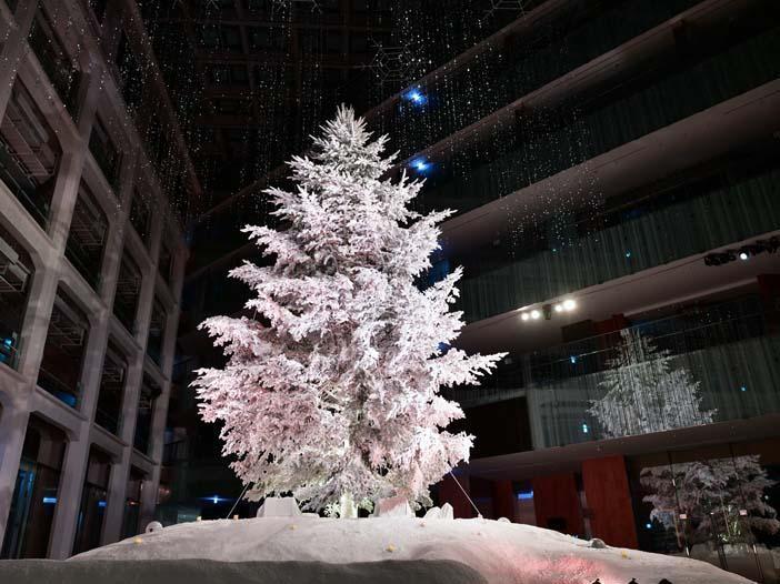 屋内日本最大級のツリーが登場 <br>「WHITE KITTE」 開催中