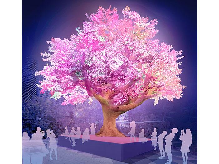 桜色に染まる景色に癒やされる <br>「日本橋 桜フェスティバル2019」開催
